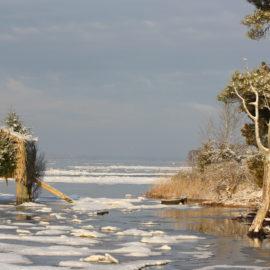 Northern Neck Land Conservancy