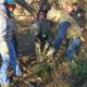 Saturday Cleanups at Salona Meadows