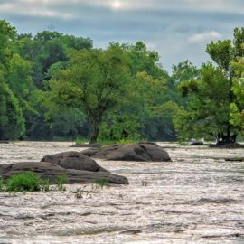 Friends of the Lower Appomattox River